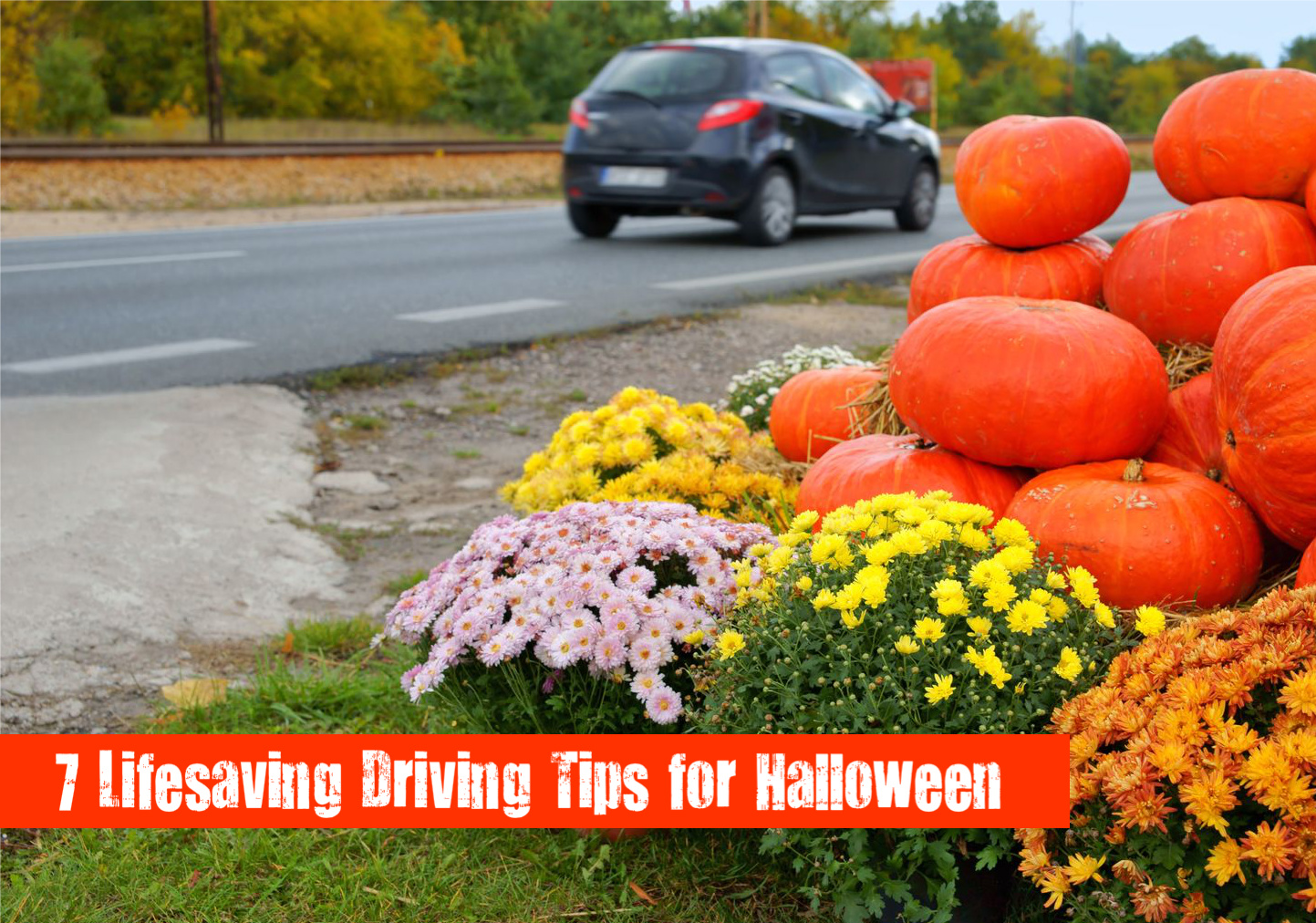 7 Lifesaving Things EVERY Driver Should Do on Halloween